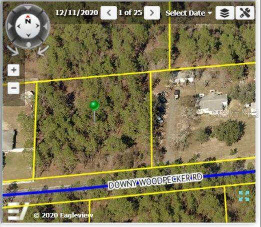 13251 Downy Woodpecker Road, Weeki Wachee, FL 34614 (MLS #W7831278) :: Realty One Group Skyline / The Rose Team