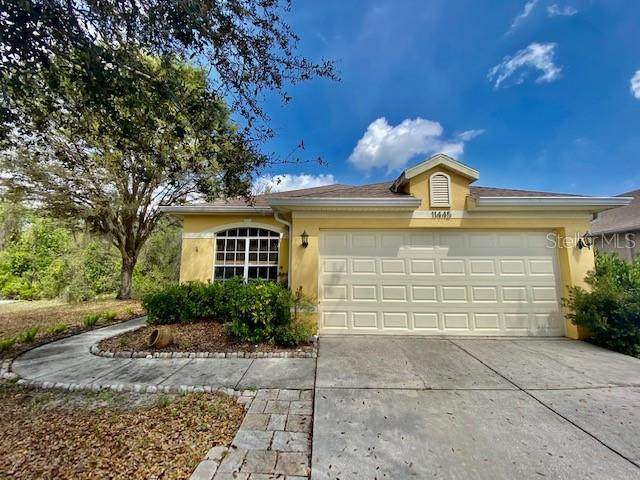 11445 Bathgate Court, New Port Richey, FL 34654 (MLS #W7831377) :: Visionary Properties Inc