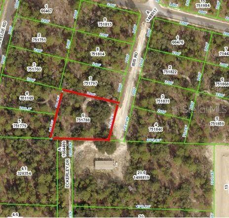 15201 Ibis Road, Weeki Wachee, FL 34614 (MLS #W7831445) :: Delta Realty, Int'l.