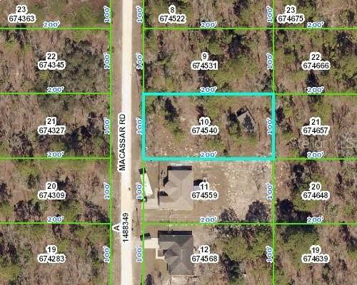 Lot 10 Macassar Road, Weeki Wachee, FL 34614 (MLS #W7832088) :: Vacasa Real Estate