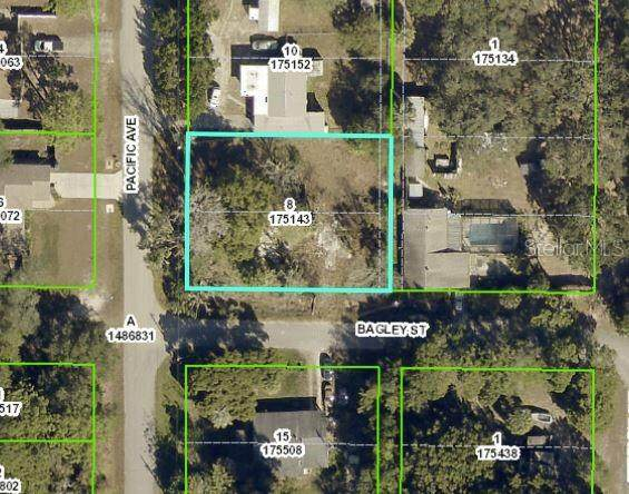 0 Pacific Avenue, Weeki Wachee, FL 34607 (MLS #W7832294) :: The Lersch Group