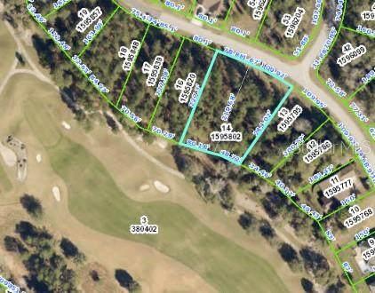 0 Hickory Oak Drive, Brooksville, FL 34601 (MLS #W7832347) :: Southern Associates Realty LLC