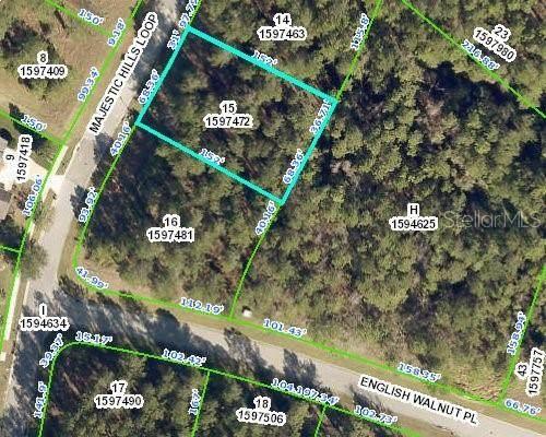 Majestic Hills Loop, Brooksville, FL 34601 (MLS #W7832699) :: Zarghami Group