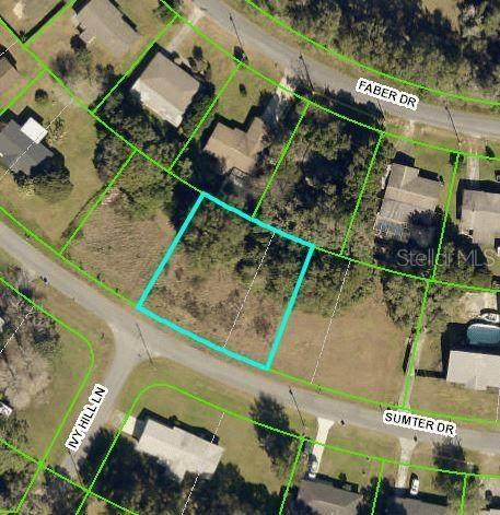 6166 Sumter Drive, Brooksville, FL 34602 (MLS #W7832813) :: Vacasa Real Estate