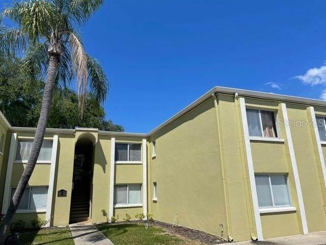 3206 W Azeele Street #223, Tampa, FL 33609 (MLS #W7832842) :: Team Bohannon Keller Williams, Tampa Properties