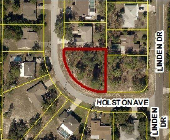 2270 Holston Avenue, Spring Hill, FL 34608 (MLS #W7832856) :: Charles Rutenberg Realty