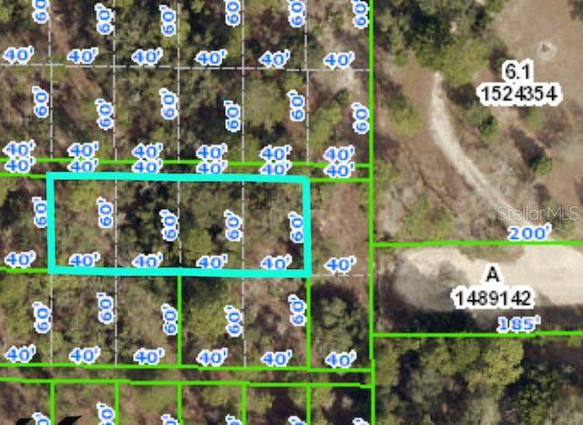 Rock Duck Avenue, Weeki Wachee, FL 34614 (MLS #W7832940) :: The Hesse Team