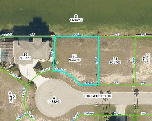 0 Triggerfish Drive, Hernando Beach, FL 34607 (MLS #W7833133) :: The Heidi Schrock Team