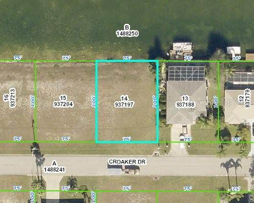 3487 Croaker Drive, Hernando Beach, FL 34607 (MLS #W7833134) :: The Heidi Schrock Team