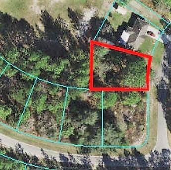 SW 153RD PLACE Road, Ocala, FL 34473 (MLS #W7833202) :: The Kardosh Team