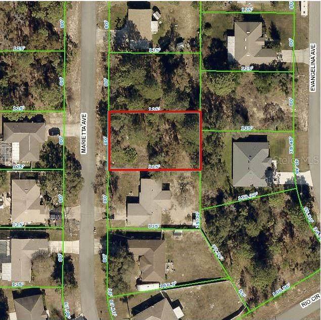 2218 Marietta Avenue, Spring Hill, FL 34608 (MLS #W7833391) :: Premier Home Experts