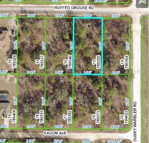 13404 Ruffed Grouse Road, Weeki Wachee, FL 34614 (MLS #W7833525) :: Expert Advisors Group