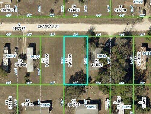 000 Chancas Street, Brooksville, FL 34604 (MLS #W7833550) :: Bustamante Real Estate