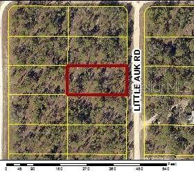16277 Little Auk Road, Weeki Wachee, FL 34614 (MLS #W7833575) :: Premium Properties Real Estate Services