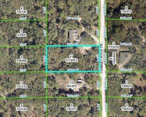 Chimney Rock Dr., Webster, FL 33597 (MLS #W7833603) :: New Home Partners