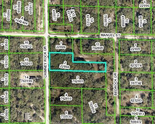 Chimney Rock Dr., Webster, FL 33597 (MLS #W7833604) :: The Paxton Group