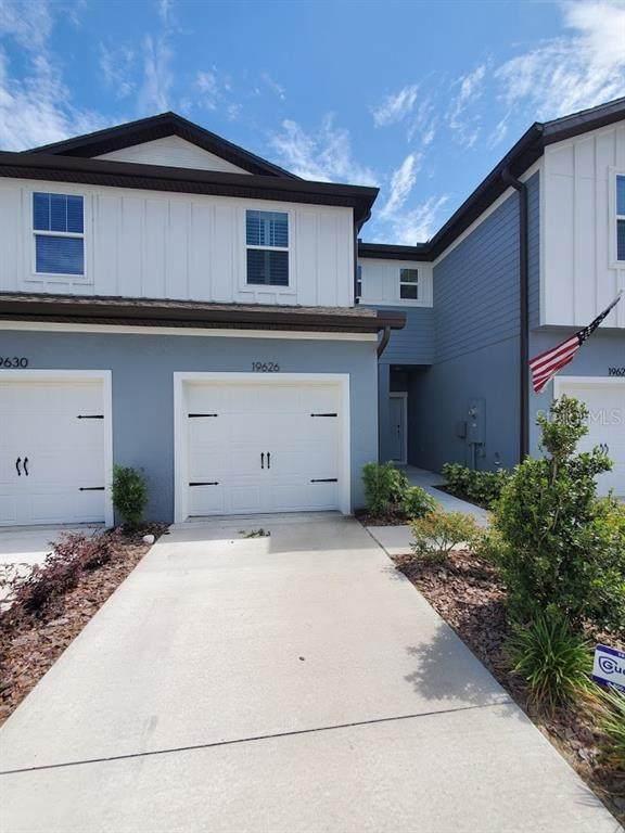 19626 Shady Oak Drive, Land O Lakes, FL 34638 (MLS #W7833664) :: Carmena and Associates Realty Group