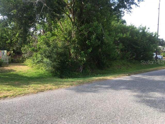 Durian Road, Venice, FL 34293 (MLS #W7834551) :: Zarghami Group