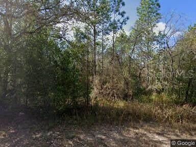 0 Fleetwood (Lot 13) Road, Weeki Wachee, FL 34614 (MLS #W7834819) :: The Robertson Real Estate Group