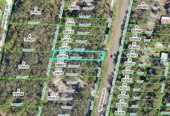 8007 Treiman Boulevard, Webster, FL 33597 (MLS #W7834822) :: Your Florida House Team