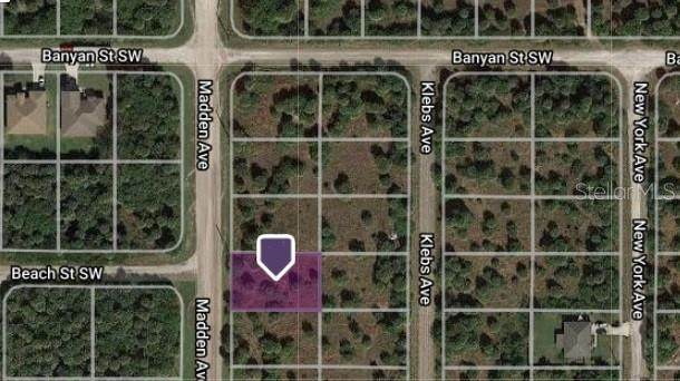 1901 Madden Avenue SW, Palm Bay, FL 32908 (MLS #W7834910) :: Heckler Realty