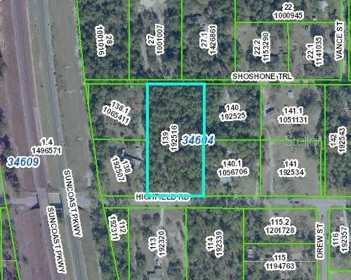 15171 Highfield Road, Brooksville, FL 34604 (MLS #W7835009) :: Gate Arty & the Group - Keller Williams Realty Smart