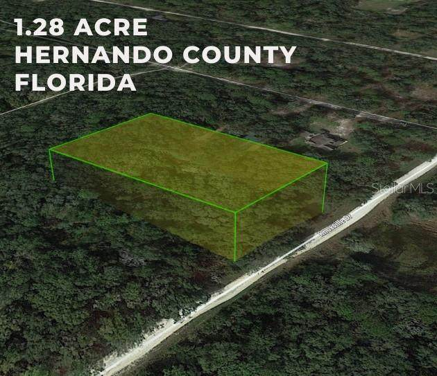 Knoxville Drive, Webster, FL 33597 (MLS #W7835482) :: Zarghami Group