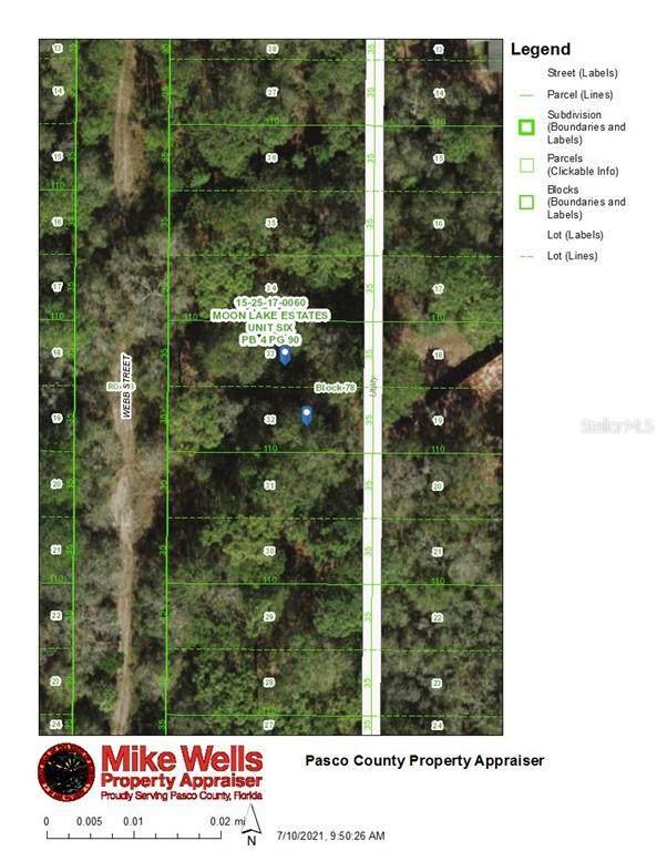 00 Webb Street, New Port Richey, FL 34654 (MLS #W7835717) :: Everlane Realty