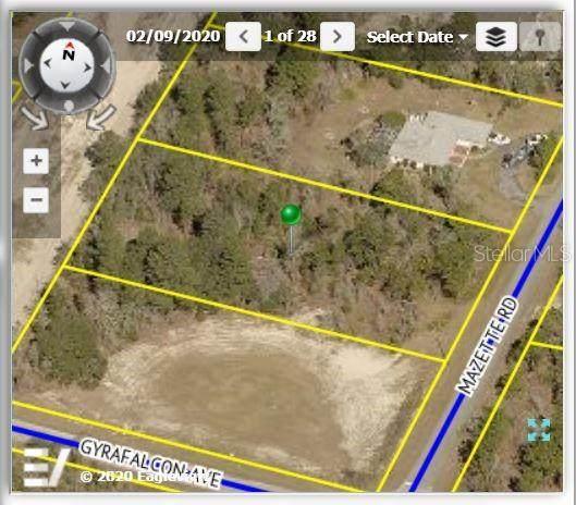 9059 Mazette Road, Weeki Wachee, FL 34613 (MLS #W7835839) :: Zarghami Group