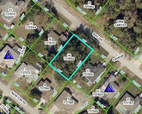 8524 Bay Drive, Spring Hill, FL 34606 (MLS #W7836089) :: Prestige Home Realty