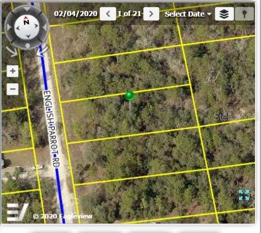 13472 English Parrot Road, Weeki Wachee, FL 34614 (MLS #W7836103) :: Zarghami Group