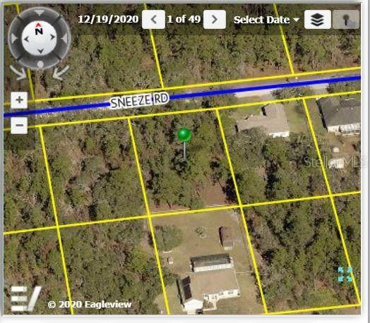 11252 Sneeze Road, Weeki Wachee, FL 34614 (MLS #W7836104) :: Zarghami Group