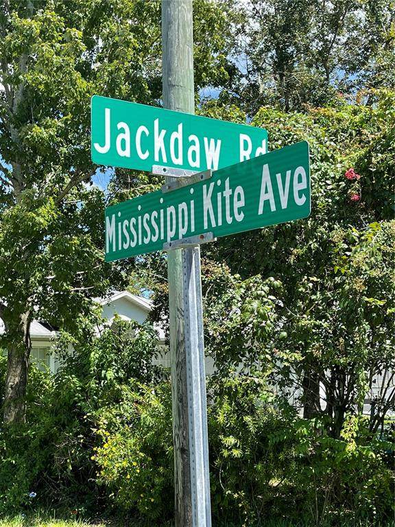11091 Jackdaw Road, Weeki Wachee, FL 34614 (MLS #W7836181) :: Baird Realty Group