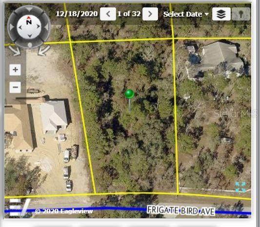 11115 Frigate Bird Avenue, Weeki Wachee, FL 34613 (MLS #W7836308) :: Gate Arty & the Group - Keller Williams Realty Smart