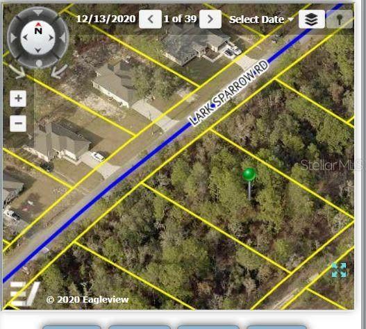 12330 Lark Sparrow Road, Weeki Wachee, FL 34614 (MLS #W7836314) :: Gate Arty & the Group - Keller Williams Realty Smart