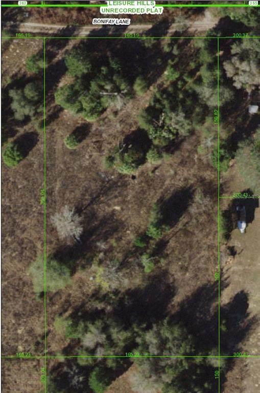 17767 Bonifay Lane, Spring Hill, FL 34610 (MLS #W7836430) :: Zarghami Group