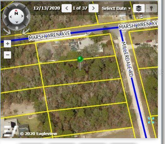 Millerdale Road, Weeki Wachee, FL 34614 (MLS #W7836617) :: Everlane Realty