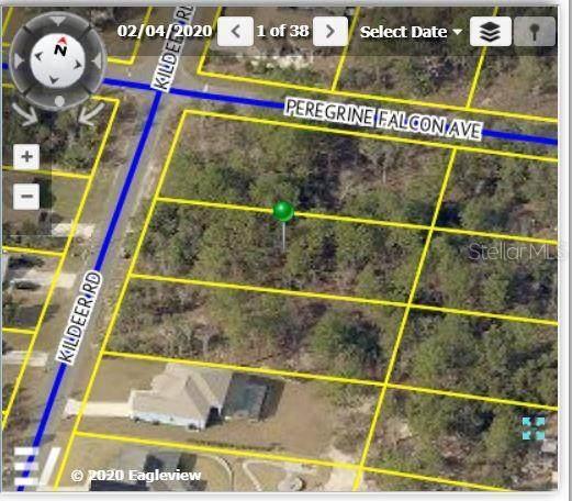 13076 Kildeer Road, Weeki Wachee, FL 34614 (MLS #W7836621) :: Everlane Realty
