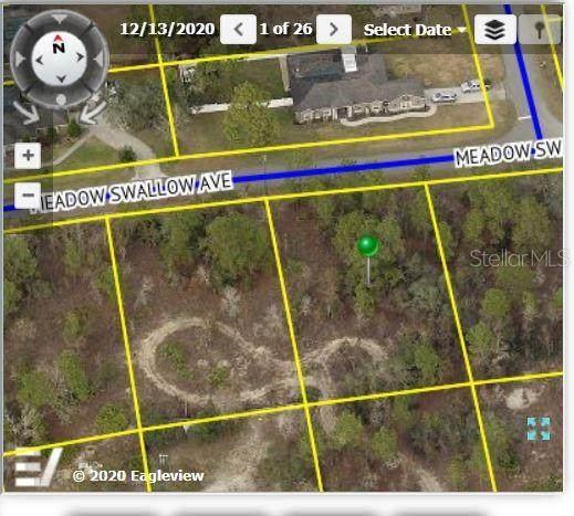 12460 Meadow Swallow Avenue - Photo 1