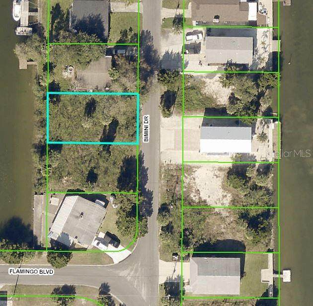 4475 Bimini Drive, Hernando Beach, FL 34607 (MLS #W7836914) :: RE/MAX Elite Realty