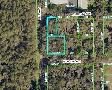 Hale Avenue, Brooksville, FL 34601 (MLS #W7837184) :: Premium Properties Real Estate Services