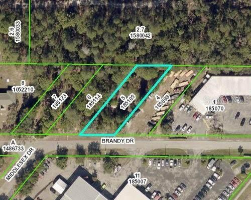 Brandy, Spring Hill, FL 34607 (MLS #W7837221) :: Sarasota Gulf Coast Realtors