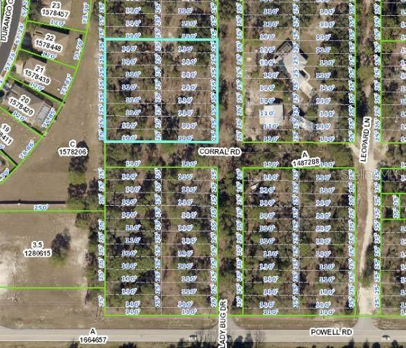 Corral Road, Brooksville, FL 34604 (MLS #W7837331) :: Premium Properties Real Estate Services