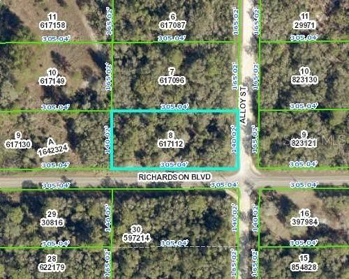 34321 Richardson Boulevard, Webster, FL 33597 (MLS #W7837519) :: Team Turner
