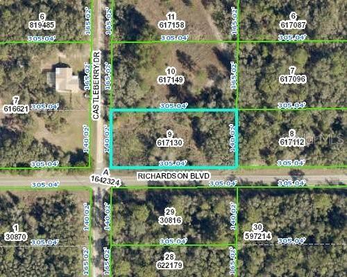 7450 Castleberry Drive, Webster, FL 33597 (MLS #W7837523) :: Team Turner