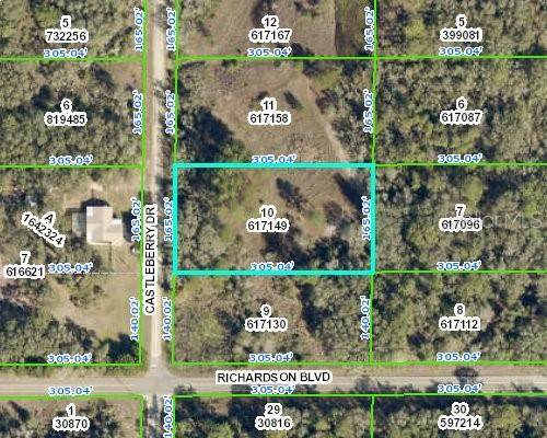 7470 Castleberry Drive, Webster, FL 33597 (MLS #W7837538) :: The Paxton Group