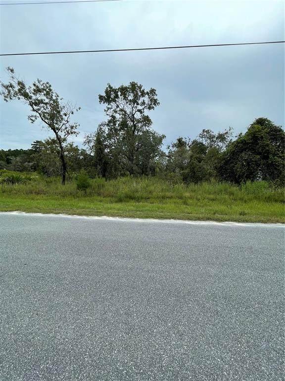 House Finch Road, Brooksville, FL 34614 (MLS #W7837875) :: RE/MAX Elite Realty