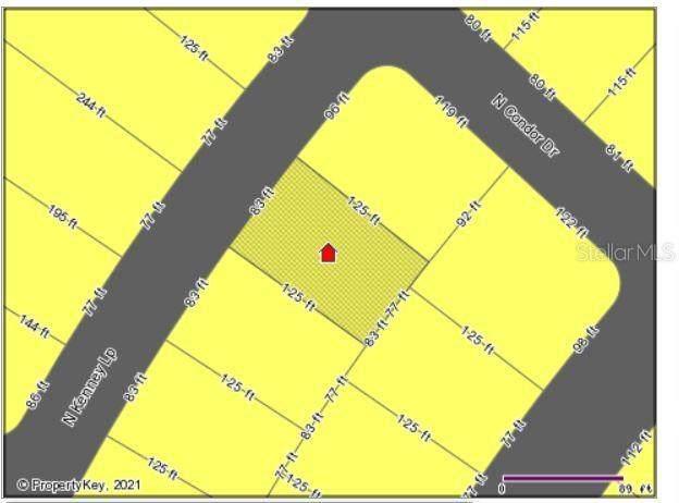 11485 N Kenney Loop, Citrus Springs, FL 34433 (MLS #W7838118) :: RE/MAX Elite Realty
