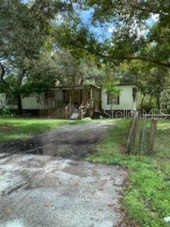 12850 Glades Avenue, New Port Richey, FL 34654 (MLS #W7838209) :: The Hustle and Heart Group