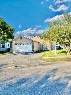 10220 Flagship Avenue, Port Richey, FL 34668 (MLS #W7838234) :: Armel Real Estate